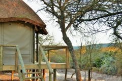 Garden Route Safari Camp  (96)