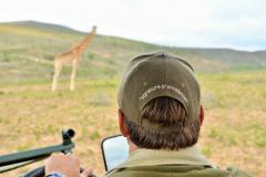 Garden-Roure-Safari-Camp-Wild-life-56