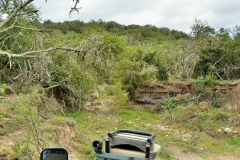 Garden-Roure-Safari-Camp-Wild-life-58